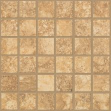 Shaw Floors Ceramic Solutions Sierra Madre Mosaic Torchwood 00600_CS24L