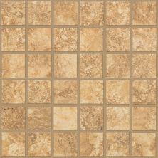 Shaw Floors Ceramic Solutions Sierra Madre Mosaic Torchwood 00600_CS24L