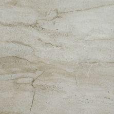Shaw Floors Ceramic Solutions Riviera 16×16 Palladium 00200_CS24P