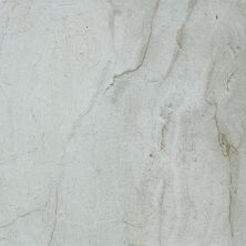 Shaw Floors Ceramic Solutions Riviera 16×16 Lunar 00500_CS24P