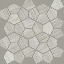 Shaw Floors Ceramic Solutions Chateau Pentagon Mosaic Rockwood 00500_CS24X