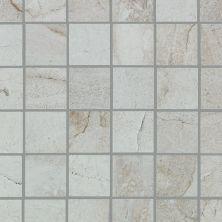 Shaw Floors Ceramic Solutions Chrome 00100_CS29P