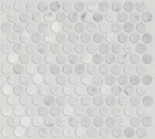 Shaw Floors Ceramic Solutions Chateau Pr Mo Bianco Carrara 00150_CS29Z