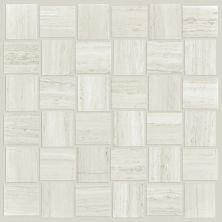 Shaw Floors Ceramic Solutions Range Bw Mosiac Plsh Ash 00550_CS33Z