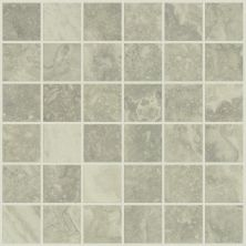 Shaw Floors Ceramic Solutions Veneto Mosaic Brine 00150_CS34X