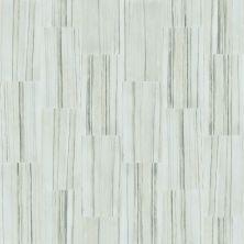 Shaw Floors Ceramic Solutions Range 16×32 Zebrino 00155_CS35W