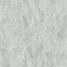 Shaw Floors Ceramic Solutions Range 16×32 Argento 00500_CS35W