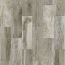 Shaw Floors Ceramic Solutions Heirloom 7 X 22 Sterling 00500_CS38Z