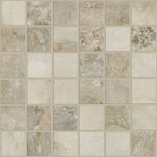 Shaw Floors Ceramic Solutions Senate Mosaic Breccia 00200_CS47P