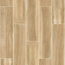 Shaw Floors Ceramic Solutions Valentino 8×32 Lights 00700_CS48P