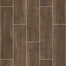 Shaw Floors Ceramic Solutions Valentino 8×32 Hollywood 00770_CS48P