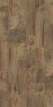 Shaw Floors Ceramic Solutions Hacienda 6×24 Pecan 00750_CS48V