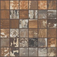 Shaw Floors Ceramic Solutions Timbered Mosaic Poplar 00670_CS48X