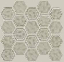 Shaw Floors Ceramic Solutions Geoscapes Hexagon Taupe 00250_CS50V