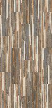 Shaw Floors Ceramic Solutions Dodge City 7×24 Accent 00157_CS50W