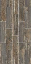 Shaw Floors Ceramic Solutions Dodge City 7×24 Barnwood 00500_CS50W