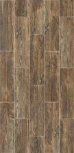 Shaw Floors Ceramic Solutions Dodge City 7×24 Smokehouse 00750_CS50W