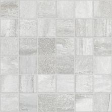 Shaw Floors Ceramic Solutions Trace 00163_CS54P