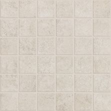 Shaw Floors Ceramic Solutions Nepal Mosaics Glacier 00100_CS55J