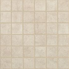 Shaw Floors Ceramic Solutions Nepal Mosaics Himalya 00150_CS55J