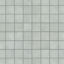 Shaw Floors Ceramic Solutions Nepal Mosaics Alpine 00500_CS55J
