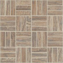 Shaw Floors Ceramic Solutions Petrified Hickory Mosaic Relic 00500_CS56Q