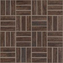 Shaw Floors Ceramic Solutions Petrified Hickory Mosaic Timeworn 00775_CS56Q