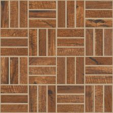 Shaw Floors Ceramic Solutions Fired Hickory Mosaic Alder 00600_CS57Q