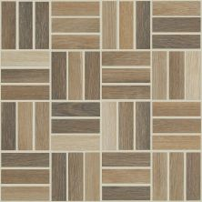 Shaw Floors Ceramic Solutions Independence Mosaic Natural 00200_CS60Q