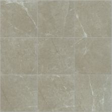 Shaw Floors Ceramic Solutions Visionary 13×13 Oasis 00501_CS62Z
