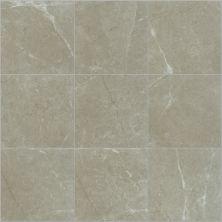 Shaw Floors Ceramic Solutions Visionary 13×13 Oasis 00501_CS62Z