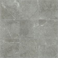Shaw Floors Ceramic Solutions Visionary 13×13 Refuge 00550_CS62Z