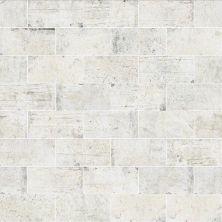 Shaw Floors Ceramic Solutions San Francisco 4×8 Presidio 00100_CS64M
