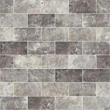 Shaw Floors Ceramic Solutions San Francisco 4×8 Lombard 00500_CS64M