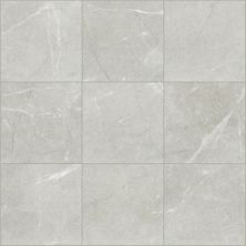 Shaw Floors Ceramic Solutions Visionary 20×20 Haven 00250_CS64Z