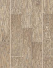 Shaw Floors Ceramic Solutions Petrified Hickory 6×24 Relic 00500_CS65K