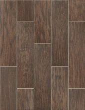 Shaw Floors Ceramic Solutions Petrified Hickory 6×24 Timeworn 00775_CS65K