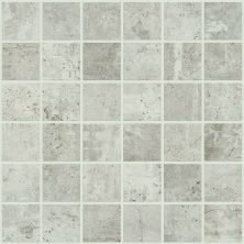 Shaw Floors Ceramic Solutions Urban Coop Mosaic Gesso 00100_CS65X