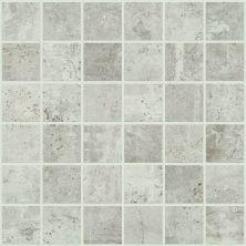 Shaw Floors Ceramic Solutions Urban Coop Mosaic Gesso 00100_CS65X