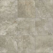 Shaw Floors Ceramic Solutions Contour 20×20 Emerge 00700_CS65Z
