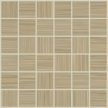 Shaw Floors Ceramic Solutions Grand Strand Mo Poplin 00200_CS68X
