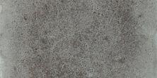 Shaw Floors Marlow4x8bn Bristol 00511_CS68Z