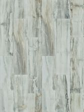 Shaw Floors Current 12 X48 Niagara Crush 00152_CS74Z