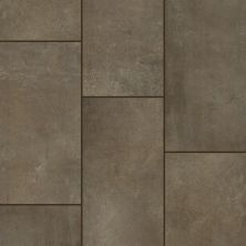Shaw Floors Ceramic Solutions Courtside 12×24 Brown 00700_CS80Q