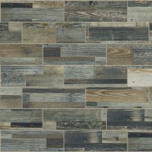 Shaw Floors Ceramic Solutions Salvaged 4x12wa Cask 00520_CS83W