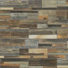 Shaw Floors Ceramic Solutions Salvaged 4x12wa Lodge 00700_CS83W