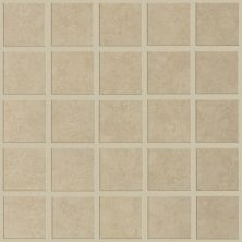 Shaw Floors Ceramic Solutions St Pete Mosaic Tabby 00200_CS91L