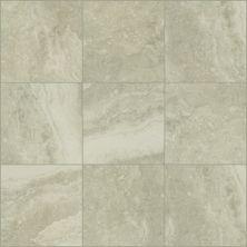 Shaw Floors Ceramic Solutions Veneto 13 Brine 00150_CS93W