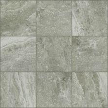 Shaw Floors Ceramic Solutions Veneto 13 Pepper 00500_CS93W
