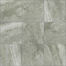 Shaw Floors Ceramic Solutions Pepper 00500_CS94W